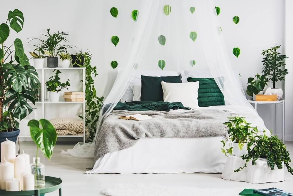 Zelený kout
