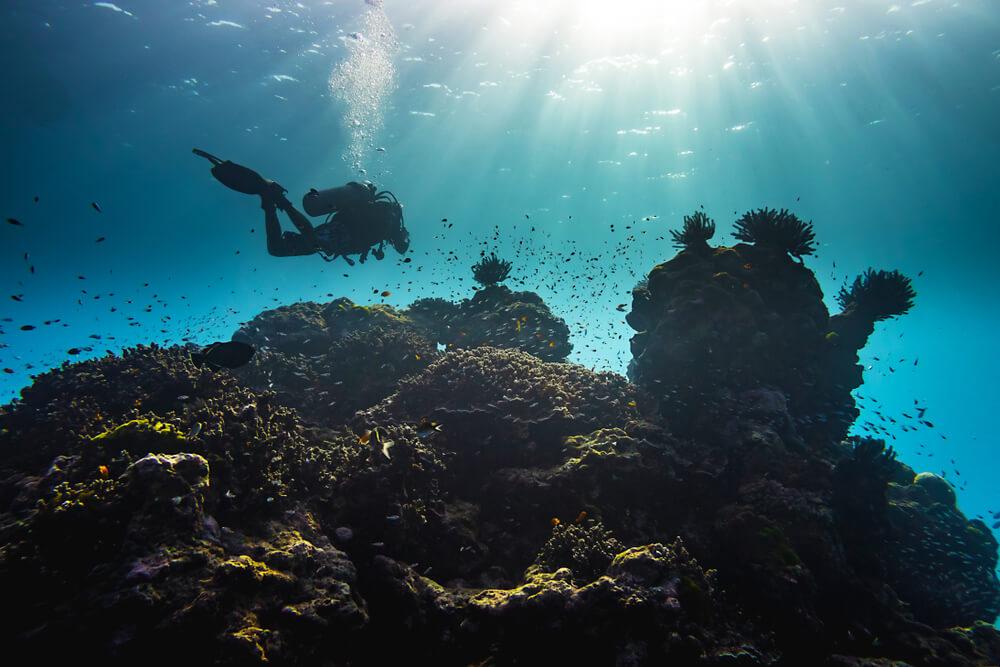 Potápění ke korálům