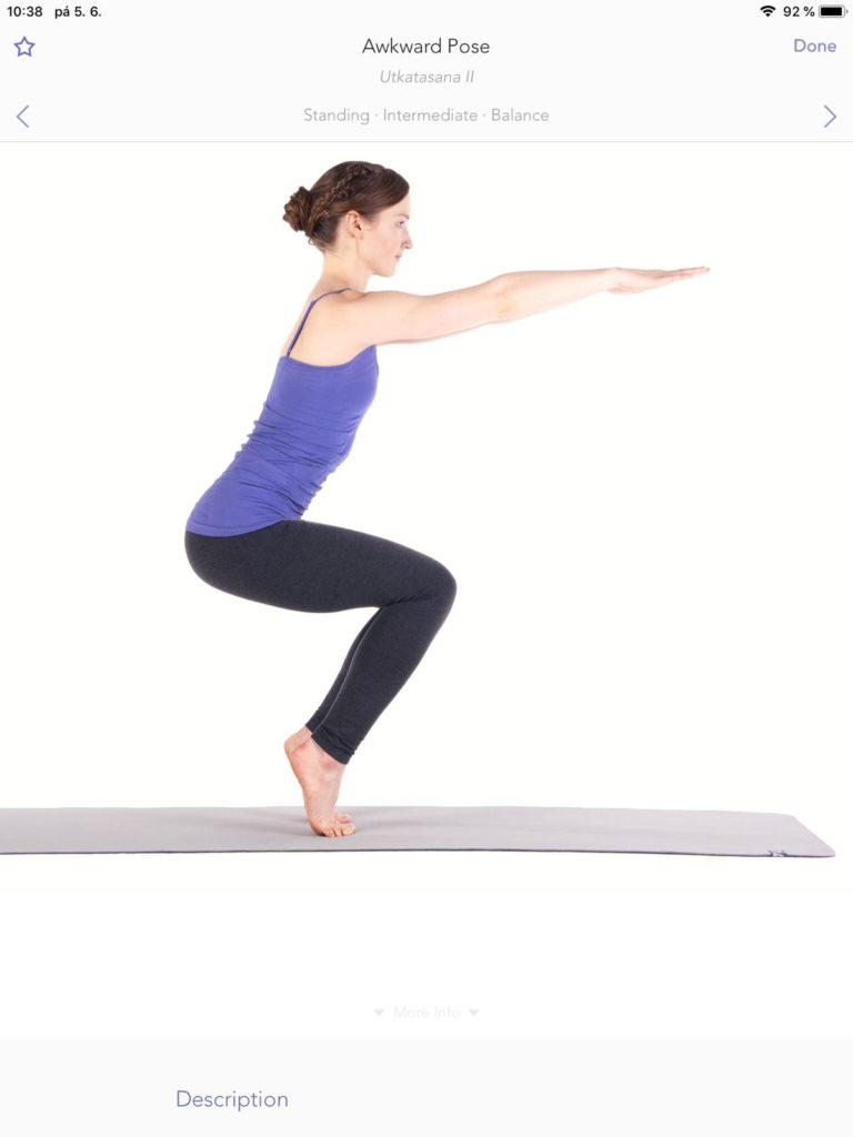 Aplikace vám před začátkem cvičení všechny pozice ukáže.